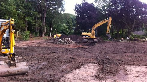 Site being cleared after tree removal